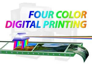 Digital 4-Color